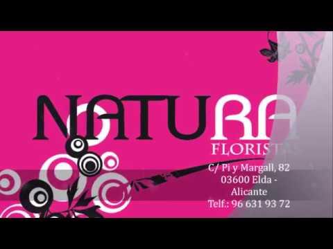 4190fb71c15a Novedades - Natura Floristas