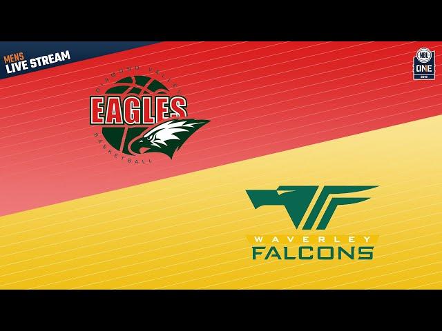 NBL1 Men Round 11 | Diamond Valley vs Waverley