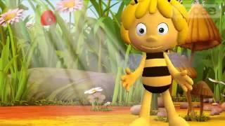 Совет от пчелки Майи.🐝