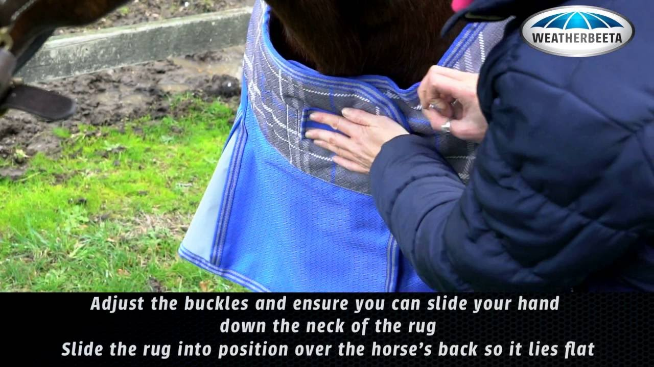 Rugging Your Horse How To Fit A Rug