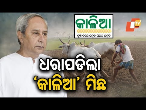 BJD caught lying over number of KALIA beneficiaries