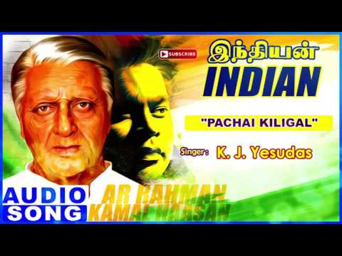 Pachai Kiligal Song | Indian Tamil Movie Songs | Kamal Haasan | Manisha Koirala | AR Rahman