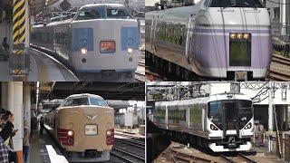 E351系やホリデー快速富士山など 2016年の八王子駅