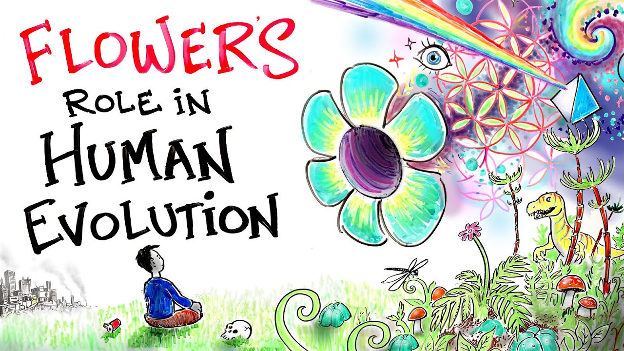 Download Flowers are the Key to Enlightenment - Eckhart Tolle - Evolution of Consciousness