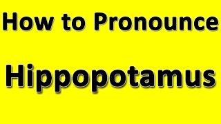 How to Pronounce Hippopotamus