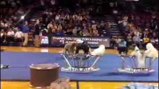Olate Dogs At Ub Men's Basketball Game