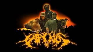 Caninus - Fear Of Dog (Religious Myths)