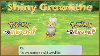 Shiny Growlithe in Pokemon Let's Go Pikachu and Eevee!
