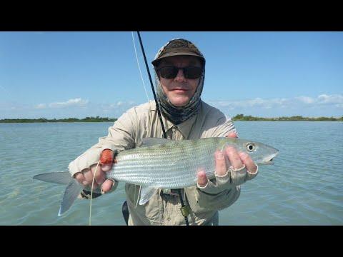 Fly Fishing Ascension Bay, November 2019