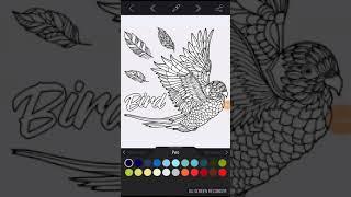 Рио птица