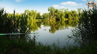 Рыбалка на поплавок летом на супер кашу Ловим карася там где не ловится Самая эффективная прикормка