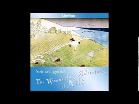 The Wonderful Adventures of Nils by Selma Lagerlöf - 30/45. Stockholm