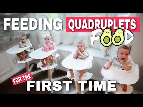 FEEDING QUADRUPLETS FOOD FOR THE FIRST TIME  |  BABY LED WEANING