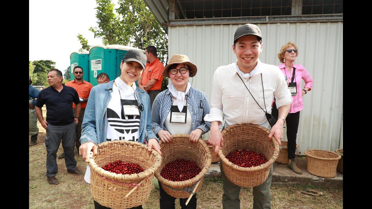 お客様がハシエンダ アルサシア農園で「一杯のコーヒーができるまで」を体験