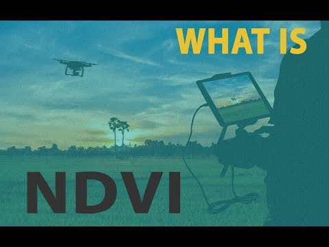 What is NDVI and how can you benefit