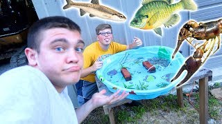 HOMEMADE POOL POND for MINNOWS and CRAWDADS!