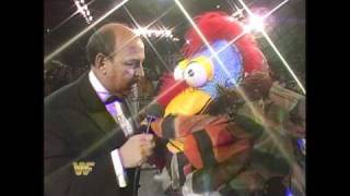 The Gobbledy Gooker makes his first appearance in WWE