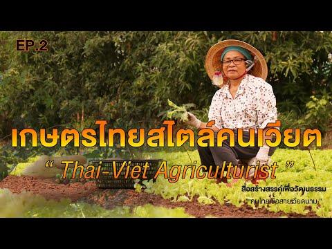 เกษตรกรรมในหมู่บ้านคนไทยเชื้อสายเวียดนาม I เกษตรไทยสไตล์คนเวียต