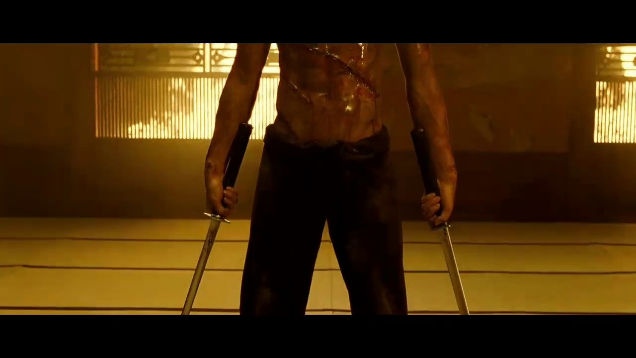 Ninja Assassin ending scene in hindi 6/7