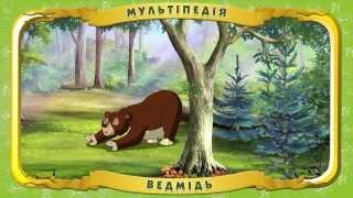 Мультіпедія тварин. Ведмідь (Уроки тітоньки Сови)