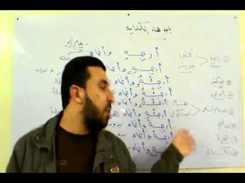 باب هاء الكناية د/ أحمد عبدالحكيم