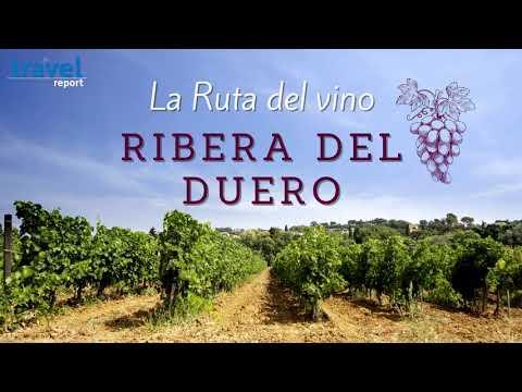 Ruta de vino Ribera del Duero: 10 básicos