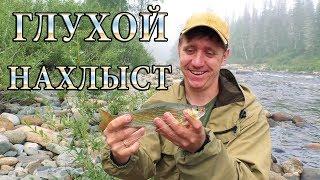 Глухой Сибирский Нахлыст. Лучший настрой для малых рек
