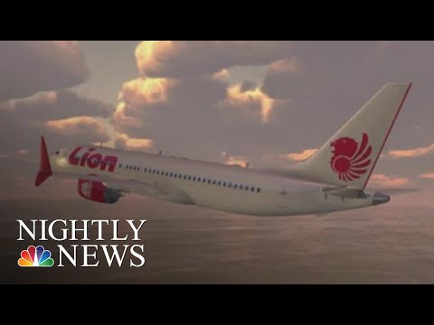 Lion Air Crash Scenario Wasn't Covered In Boeing 737 MAX Manual, Veteran Pilots | NBC Nightly News
