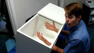 Mirror Box Visual Feedback Therapy