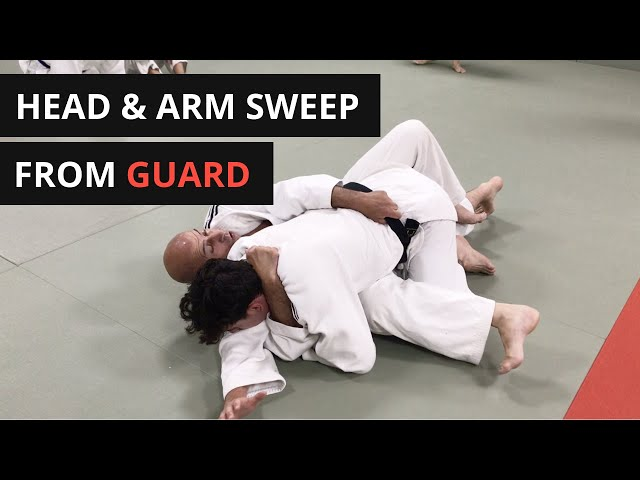 Head and arm sweep/turnover from Do-Osae (guard)