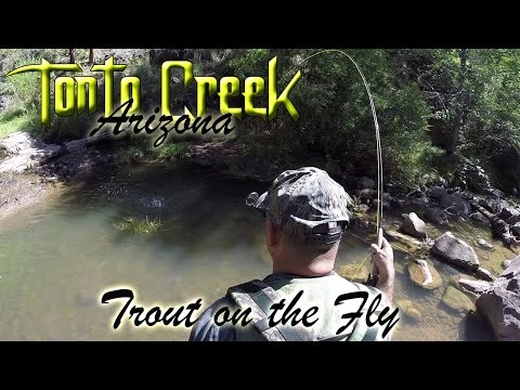Fly Fishing - Tonto Creek Trout On The Fly