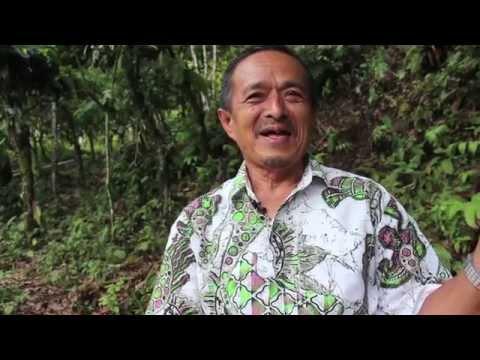 Masyarakat Adat To' Jambu, Palopo, Menuntut Hak atas Tanah