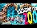 Dziecięce Przeboje - Idziemy Do ZOO 2018 (Wersja fabularna - teledysk)
