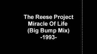 Reese Project, The - The Miracle Of Life (Big Bump Mix)