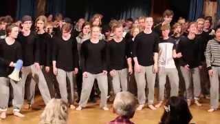 Mellerup Efterskole optræder i Ballytobin Irland