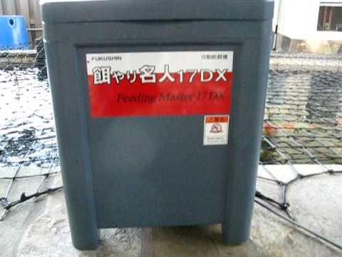 Fukushin koi feeder youtube for Koi auto feeder