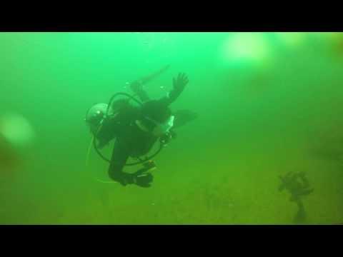 Diving the Joe Patti Memorial Reef/Barge in Pensacola, FL