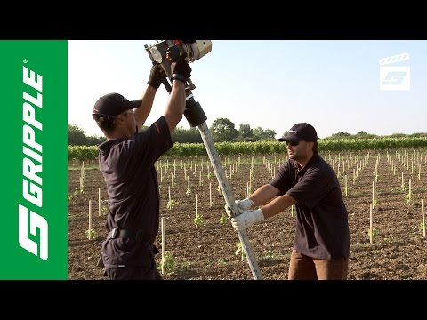 Installing Metal Vineyard Posts feat. Gripple Petrol Driver