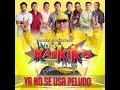 Ya No Se Usa Peludo - Los Karkiks (Audio Oficial 2019) By: Elcuco Nica