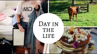 Drive with me + story time, COWS, Driving range | VLOG | KAITLYN MURRAY