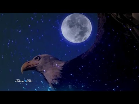 Leo Rojas - Watch Over My Dreams