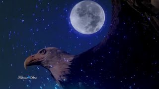 Leo Rojas - Watch Over My Dreams