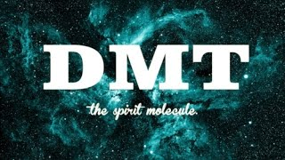 ДМТ: Молекула духа / DMT: The spirit molecule (2010)