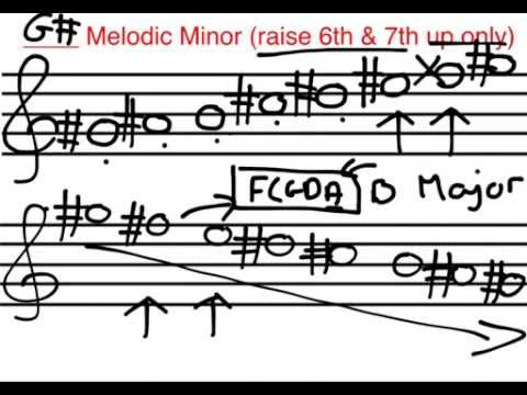 Lesson 4 Basic Music Theory Scales