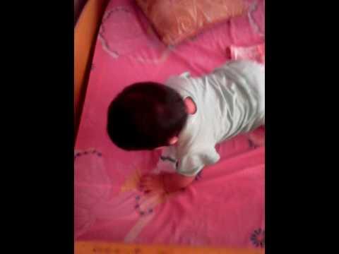 VIDEOS GRACIOSOS DE BEBES PELEANDO CON UNA BOLSA