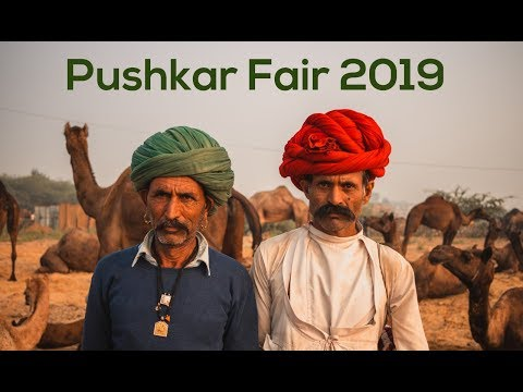Pushkar Fair 2019 | Camel Fair | Incredible Rajasthan | Rajasthan Tourism|