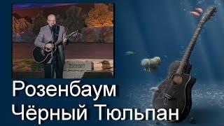 Песни под гитару. Розенбаум - Чёрный Тюльпан