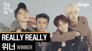 Gambar cover 위너 WINNER - REALLY REALLY [세로라이브] LIVE