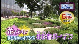 【HBCテレビ】マイタウンあさひかわ「花ざかり!まちなかのオアシス 北彩都ガーデン」