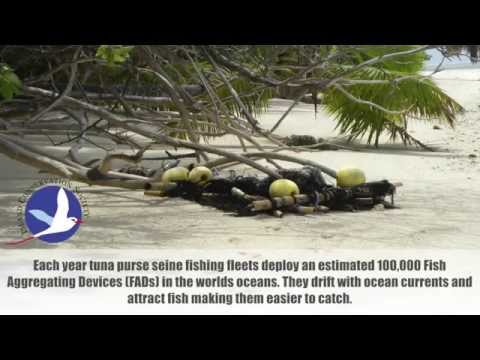 Fish Aggregating Devices (FADs) - Seychelles Outer Islands